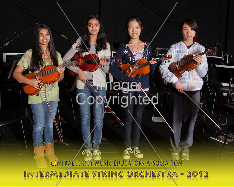 220--STRG ORCH--2012