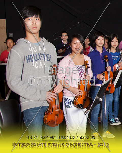 201--STRG ORCH--2012