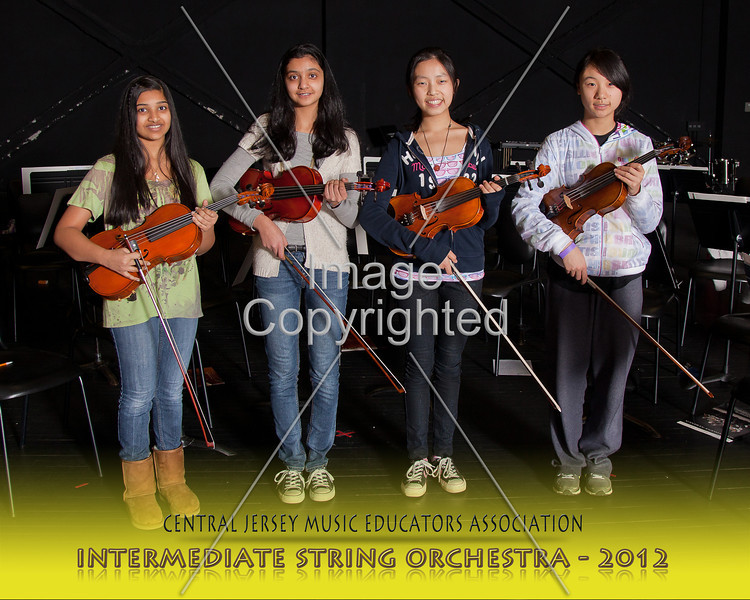 219--STRG ORCH--2012