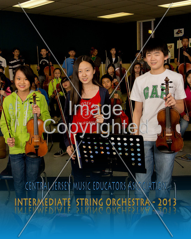 #- 305- IMT STRING - 087a4910