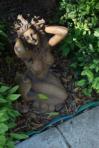This mermaid is in the backyard garden of Barbara Harmony.
