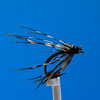 """p_fte_05a_TAuYoung_""""Soft_Hackle, Pheasant Rump""""-2"""