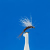 showshoe emerger fly