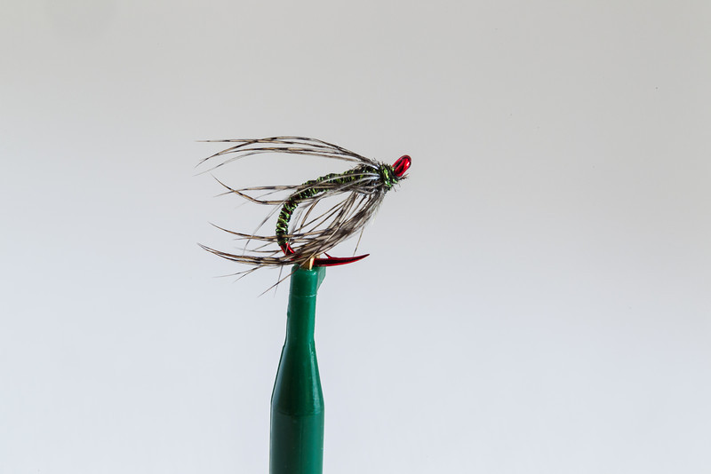 6 AuYoung-Soft Hackle