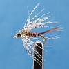 "p_fte_03RScafe_""Pheasant_Tail_and_Partridge"""