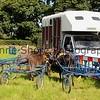 Donkey derby 026