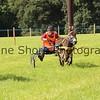 Donkey derby 046