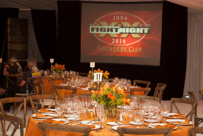 Celebrity Fight Night 2014