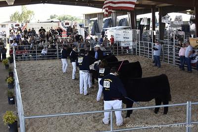 CFR Livestock Show 2018 Beef