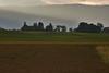 Clover Field 06_DSC2841 (2005-07-10)