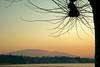 Sunset - Hermance 08_DSC1763 (2007-01-28)