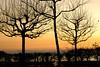 Sunset - Hermance 10_DSC1795 (2007-01-28)