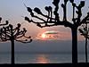 Sunset - Hermance 01 CP5k DSCN1458 (2004-04-11)