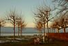 Sunset - Hermance 07_DSC1748 (2007-01-28)