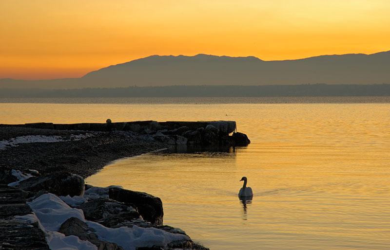 Sunset - Hermance 11_DSC1806 (2007-01-28)