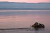 Sunset - Hermance 09_DSC1786 (2007-01-28)