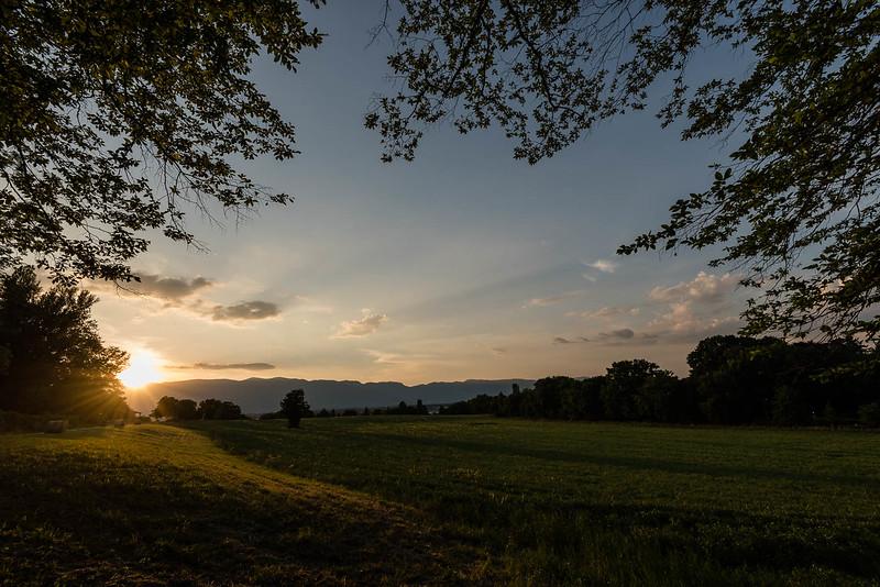Sunset looking over field near Chemin Machéry (Chemin des Crêts-de-Pregny)