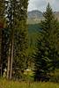 Lenzerheide Lakeside 03_DSC0871 (2006-07-27)