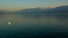 Sunset-Rapperswil-Lakeside_2011-10-22_175044