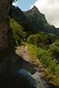 Lac-de-Taney-11_DSC6904_2010-07-23