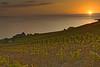 Sunset at Grandvaux 12_DSC4076_DSC4077 (2007-09-16)