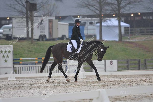 BRIE MURRAY AND FERNHILL DISCO #23