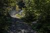 Hiking path in Gasterntal valley