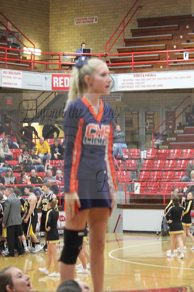 Carterville Lions High School Cheerleading 2012-2013