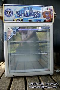 """The """"New"""" Freezer"""