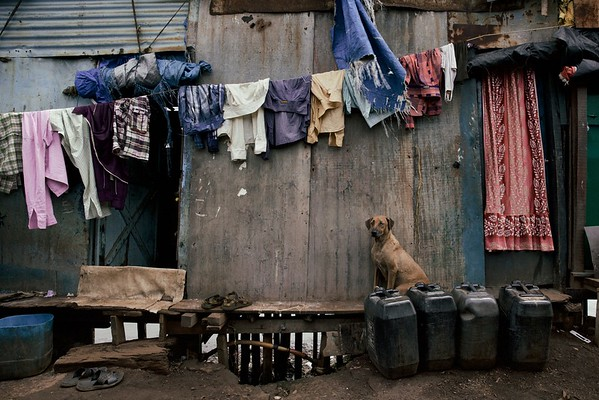 Looking really lonely, like he was waiting for his family to come home - Mumbai, India.  2015.
