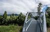 Bridge, Trees & Foggy Mountains