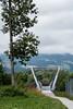 Tree & Bridge