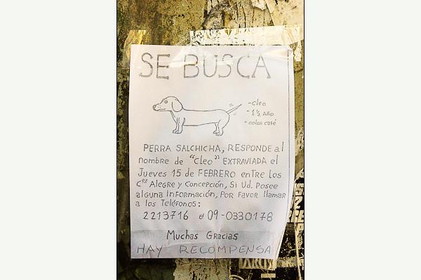 """""""Missing""""<br /> Valparaiso"""