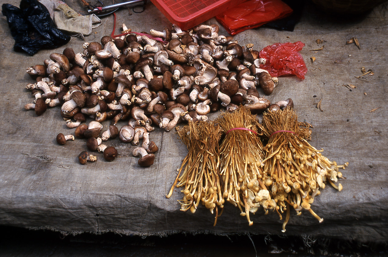MUSHROOMS - SANJIANG MARKET