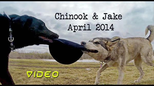 chinook and jake tug 0' war movie