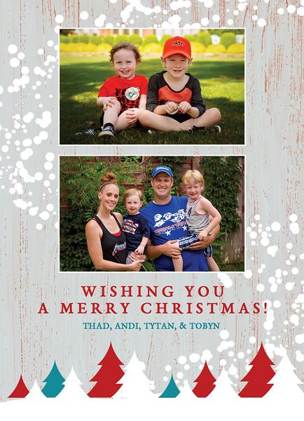 Christmas Card 2016 BACK