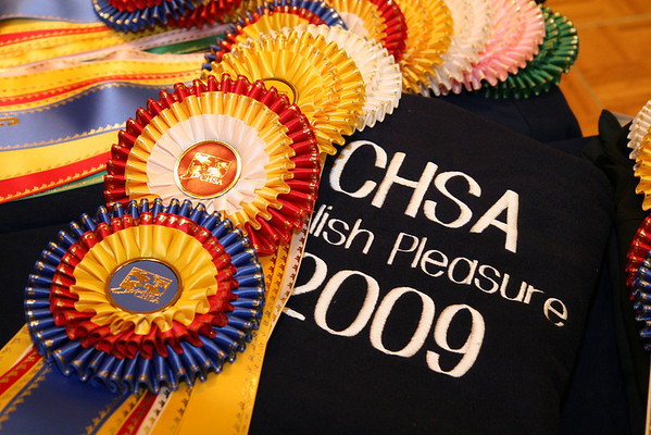 2009 CHSA Awards Banquet