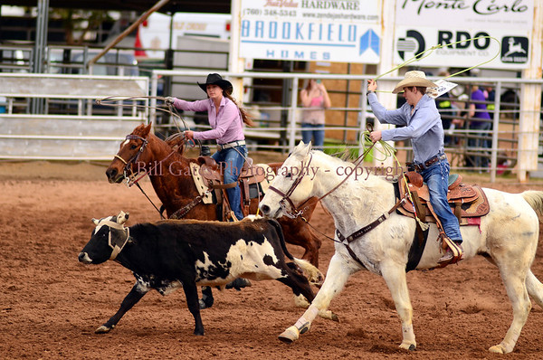 CHSRA Steer Roping