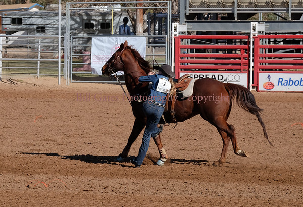 CHSR District 8 - Goat Tying Event - Brawley Rodeo