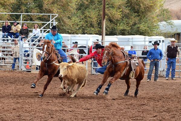 CHSRADistrict8-SteerWrestling 1-19-14