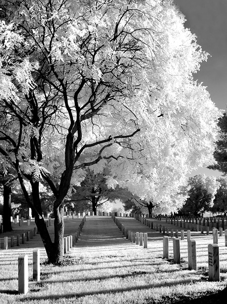 The Long Shadow  - Fort Smith National Cemetery