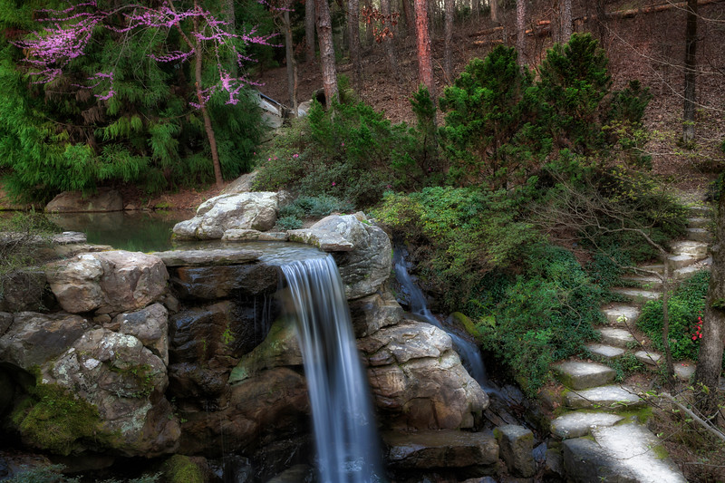 A Walk in Spring - Garvan Woodland Gardens - March 2017