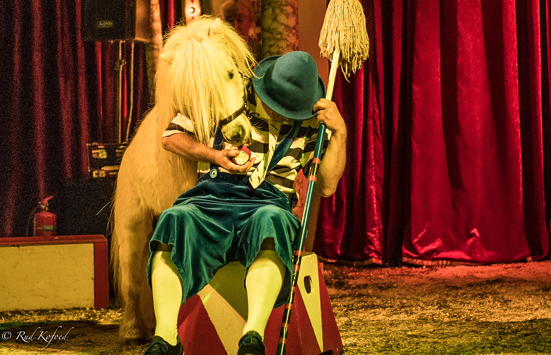 Hvad er nu det - en drillesyg hest, der vil have mit æble...