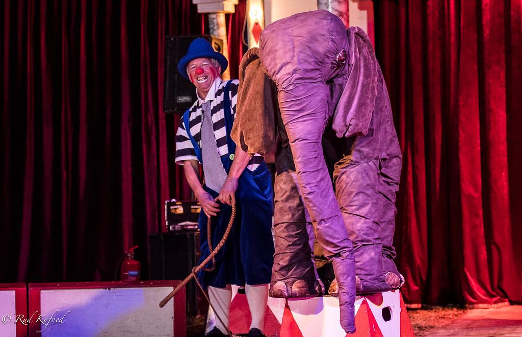Det er den hyggeligste elefant i dansk cirkus...