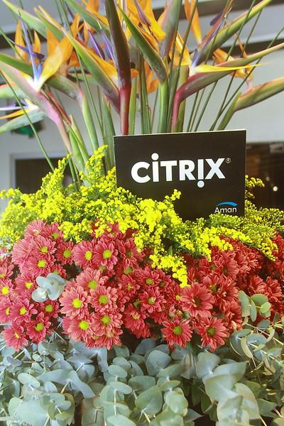 CITRIX 8.11.2016