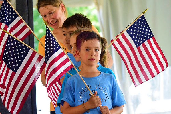 Lehigh valley flags