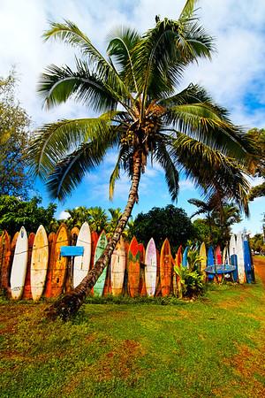Hawaiian senery