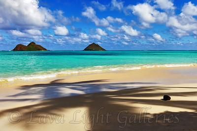 Hawaii CJ
