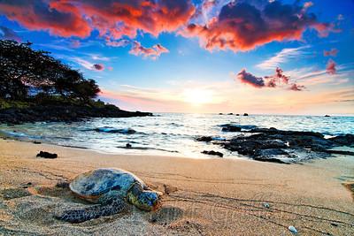 Sunset and Sunrise CJ