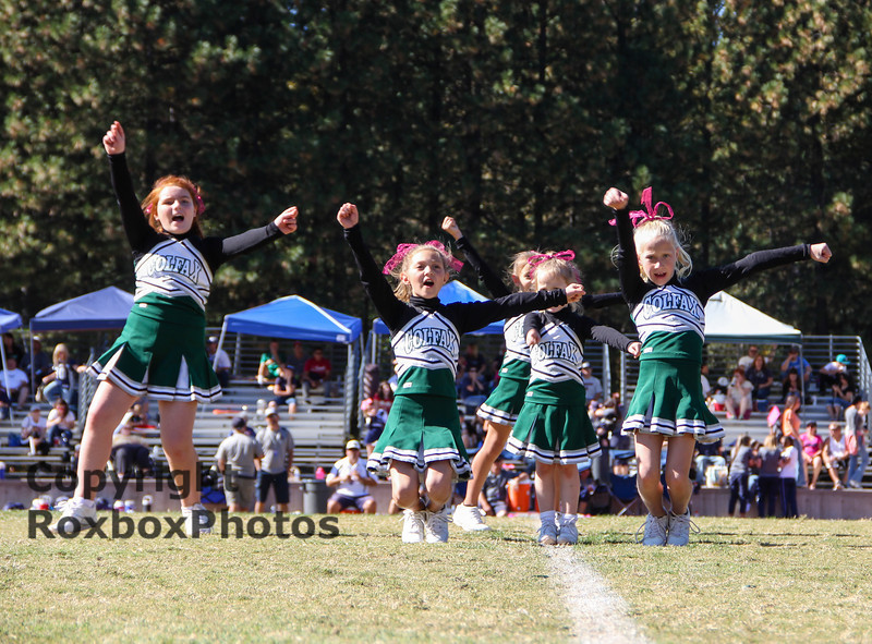 PeeWee Cheer 101913-21